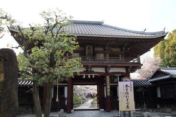 2014sakura_honpo-ji_01.jpg