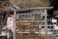 2014sakura_nyakuo-ji_jinjya_05.jpg