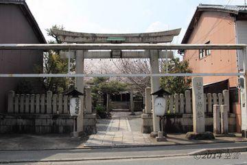 2014sakura_wakamiya_jinjya_01.jpg