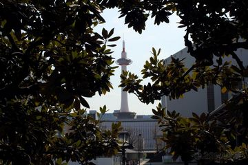 kyoto_tower017.jpg
