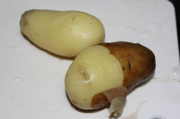 potato_2.jpg