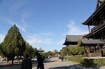 to-fukuji_2013-11_18.jpg