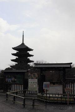 to-ji_2014-01#3_03.jpg