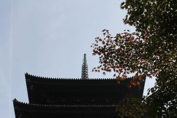 to-ji_ko-yo-2013-11_25.jpg