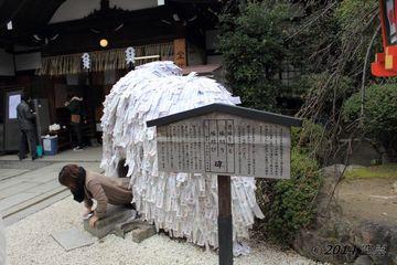 yasui_konpiragu2014-01_03.jpg