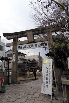 yasui_konpiragu2014-01_05.jpg